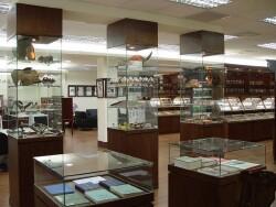 標本展示區